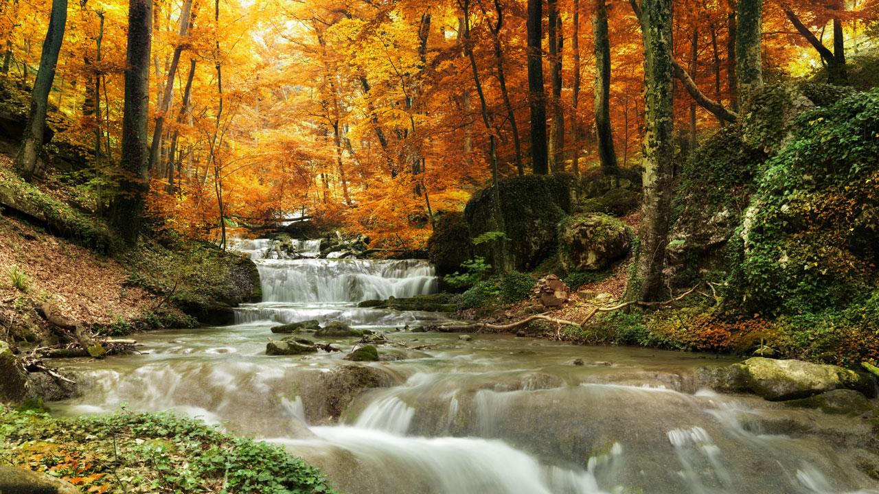 Beautiful creek in autumn