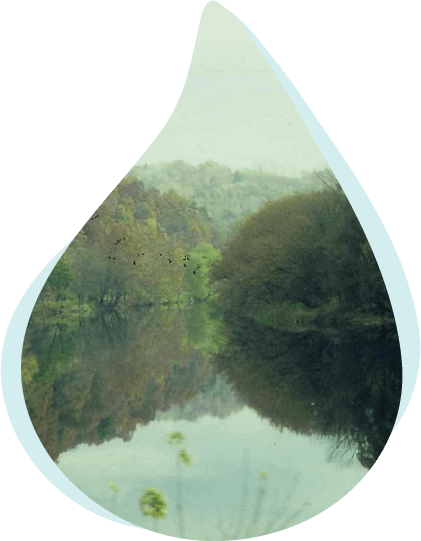 Watersheds & Stream Health