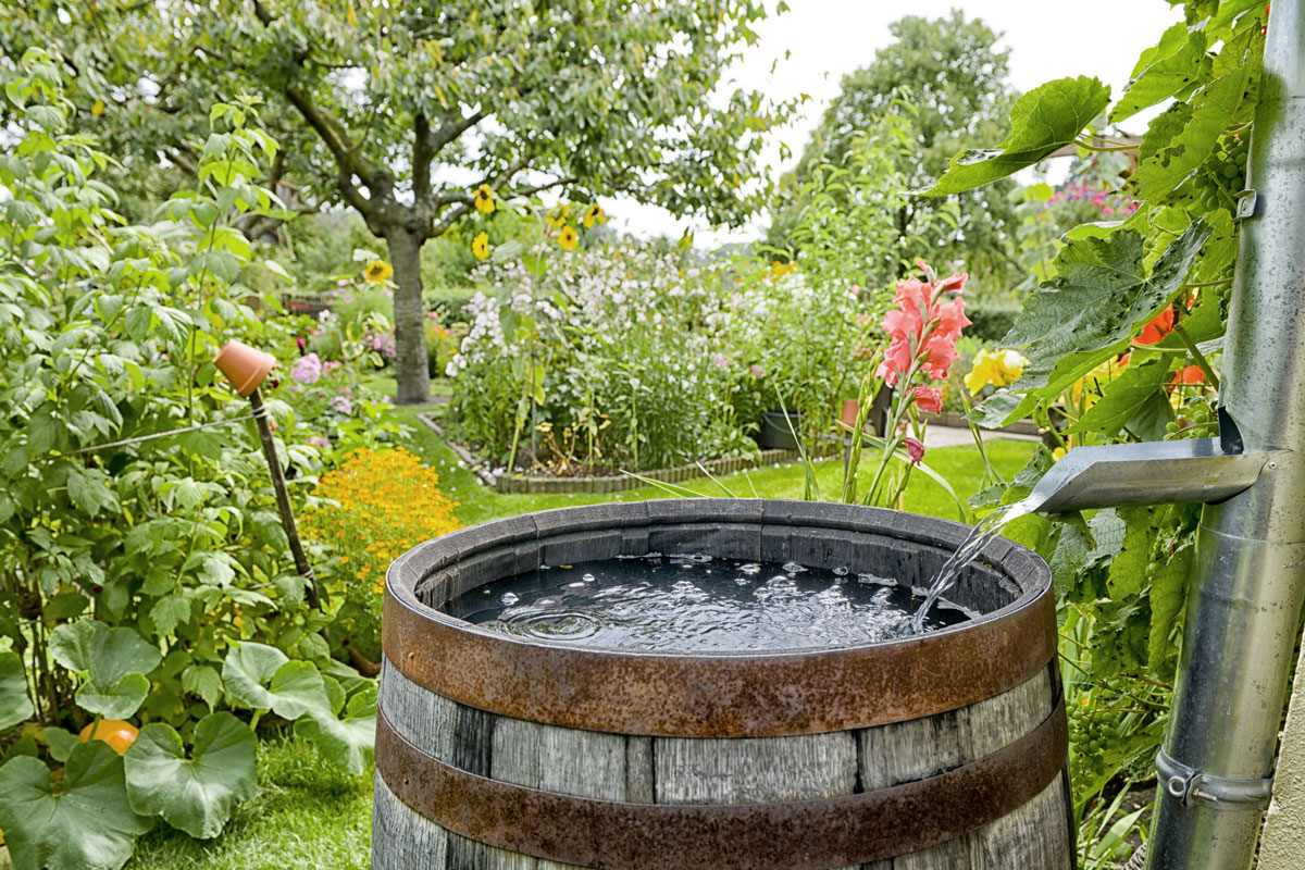 Reduce your impact, install a rain barrel