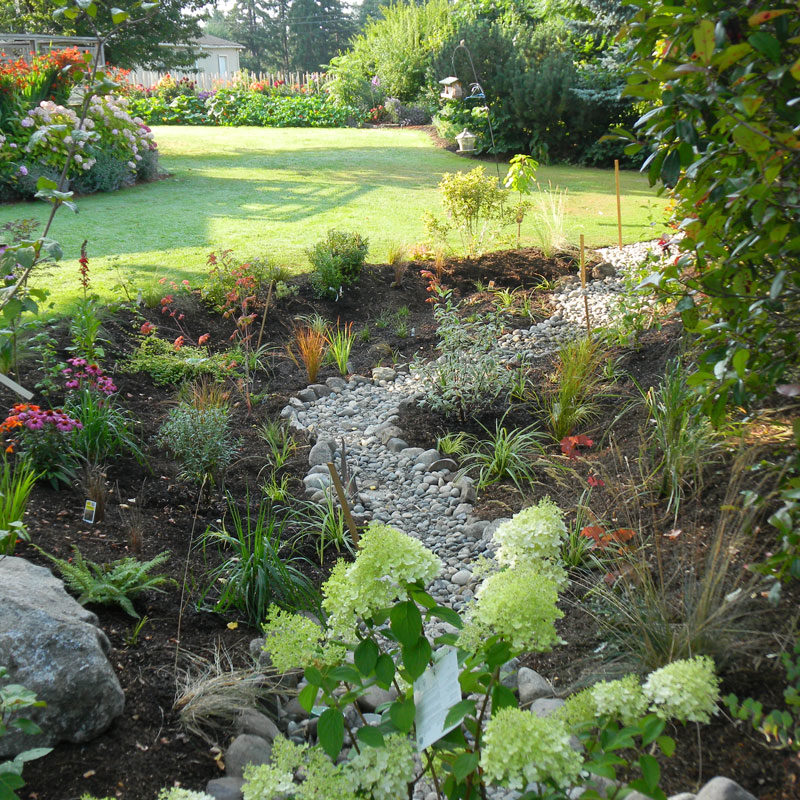 Rain gardens serve an important purpose